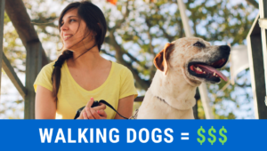 make-money-walking-dogs-1