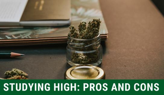 Studying While High on Marijuana: A Good Idea?
