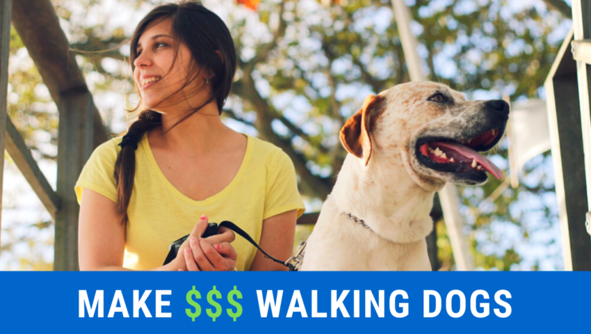 Did you know you could make money by walking dogs? Check out these apps.