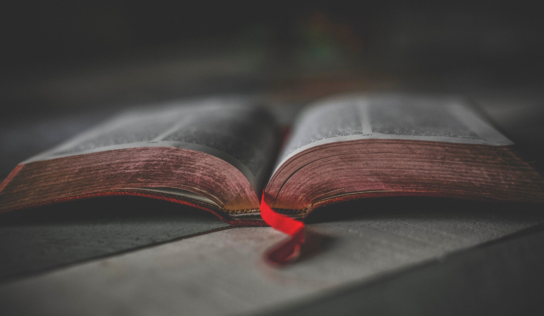 The 45 Best Bible Verses for Students