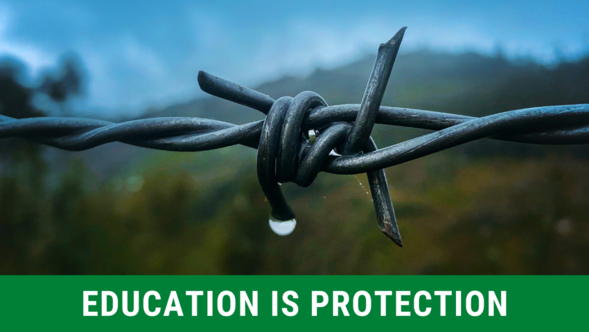 Reason 3: education is protection.